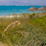 Spirits of the Caribbean: Caribbean Punch, Providenciales, TCI