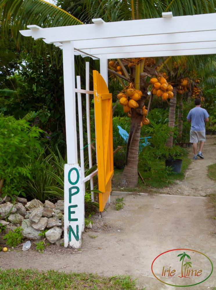Island Farm -1