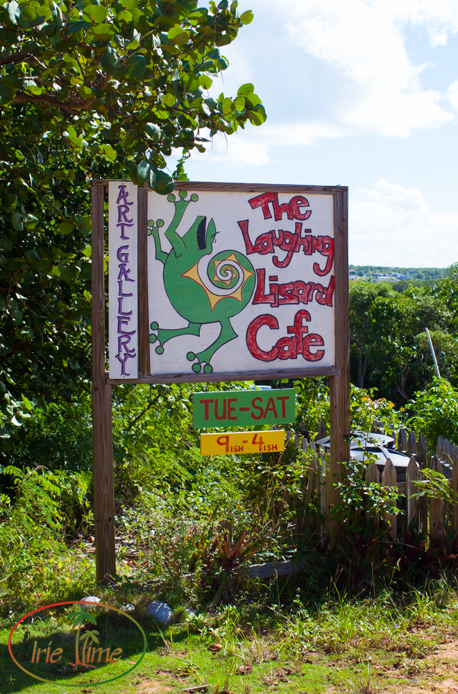 Laughing Lizard-6