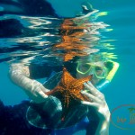 Under the Sea with Shoal Bay Scuba, Anguilla