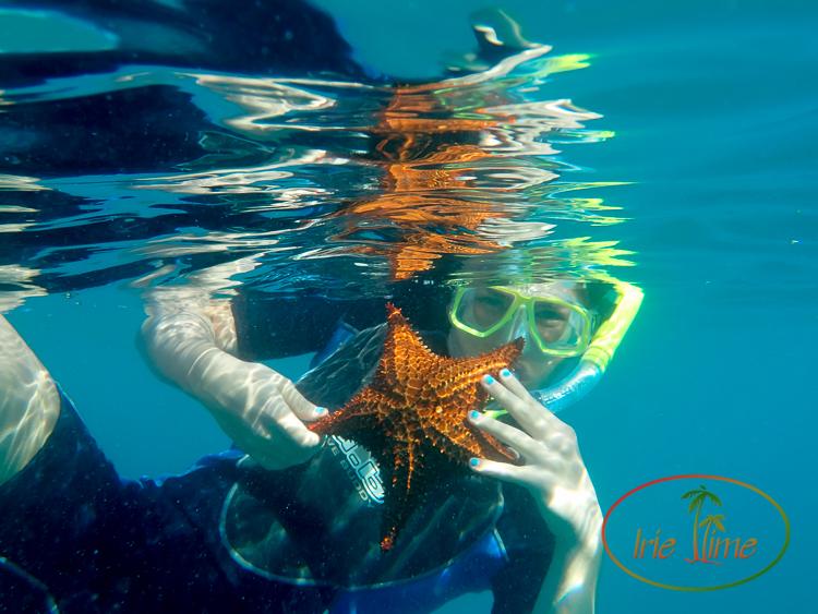 Shoal Bay Scuba Anguilla