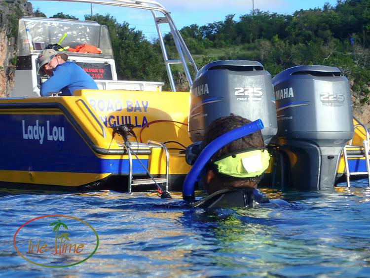 Shoal Bay Scuba L-39