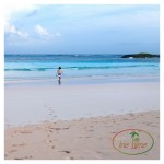 Our Complete Eleuthera Trip Report