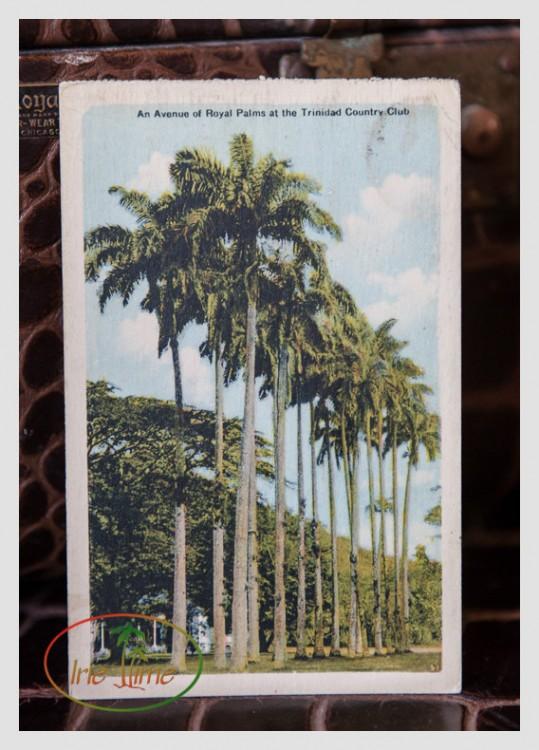 Vintage Postcards L-18