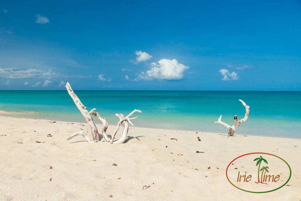 Barbuda Beach-13