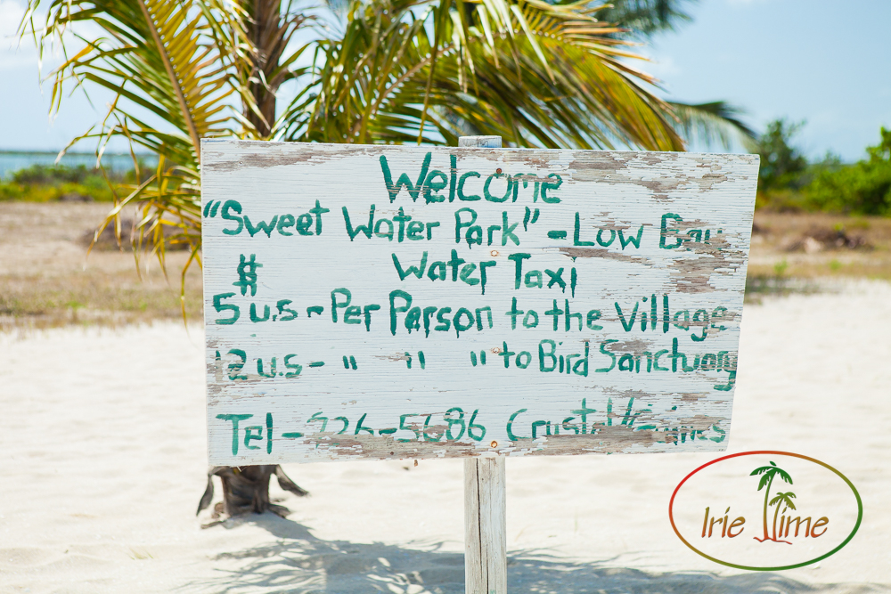 Barbuda Beach-23