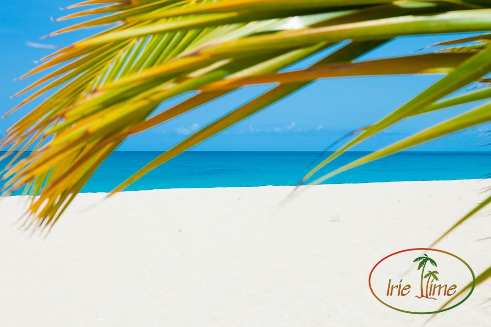 Barbuda Beach-26