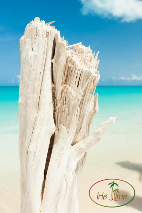 Barbuda Beach-33