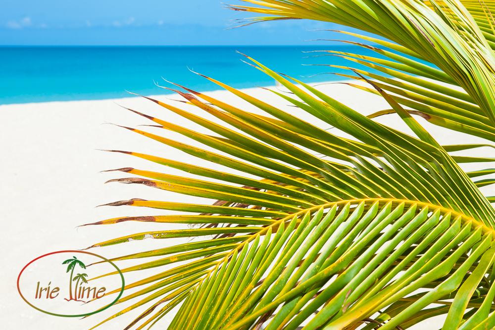 Barbuda Beach L-25