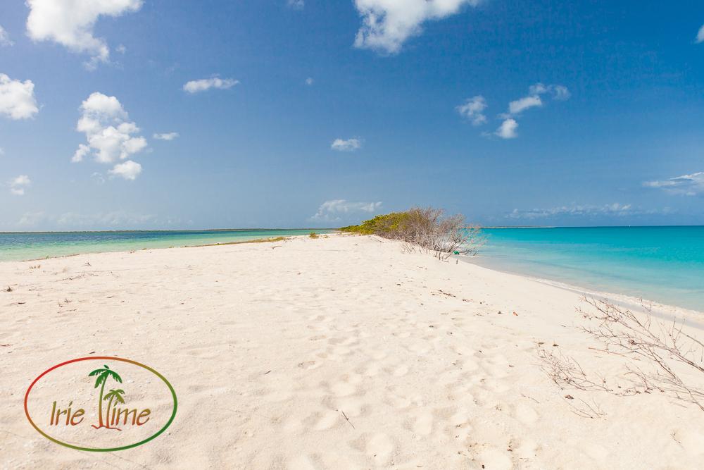 Barbuda Beach Lr-1