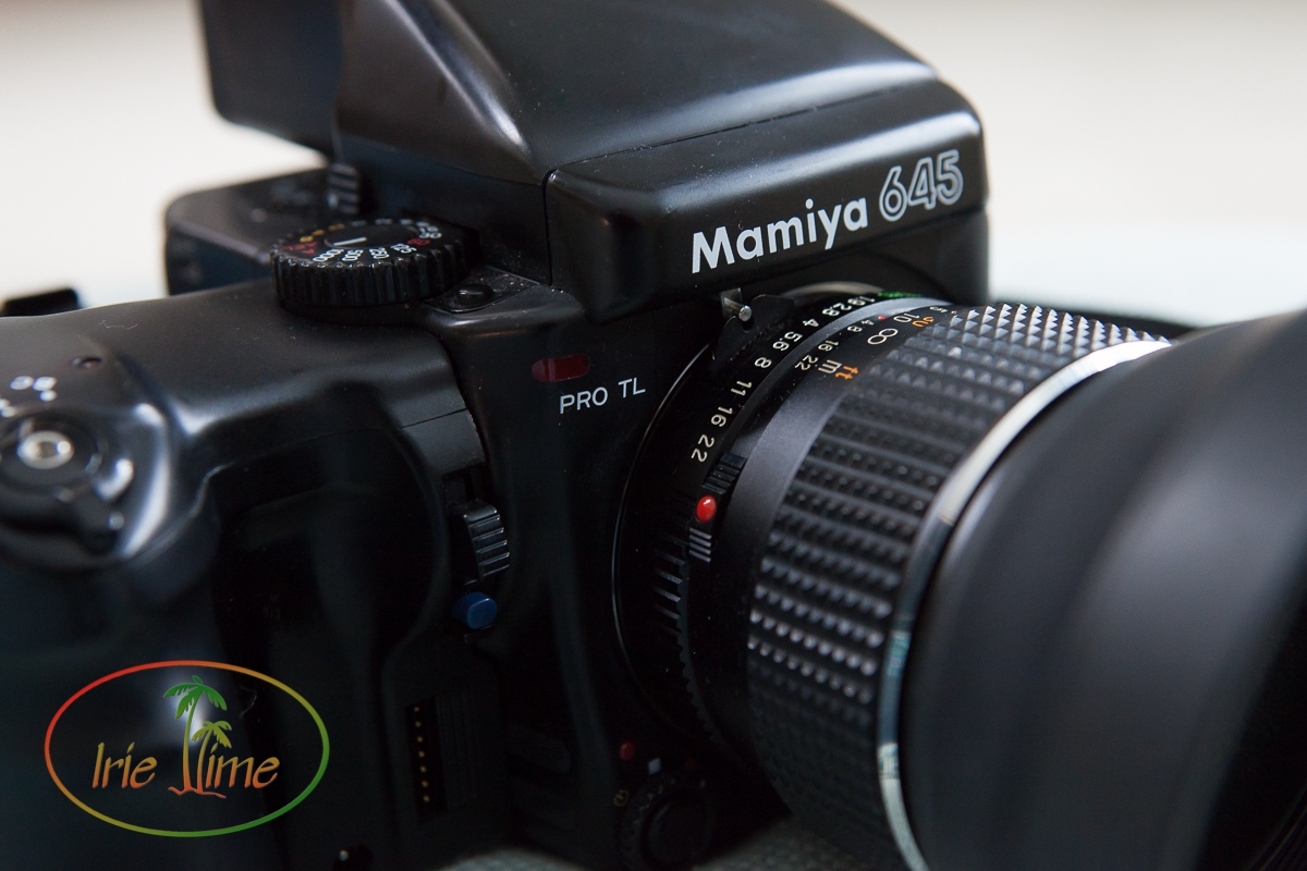 Mamiya Pro TL with 80mm f/1.9 lens, power winder, and AE prism finder