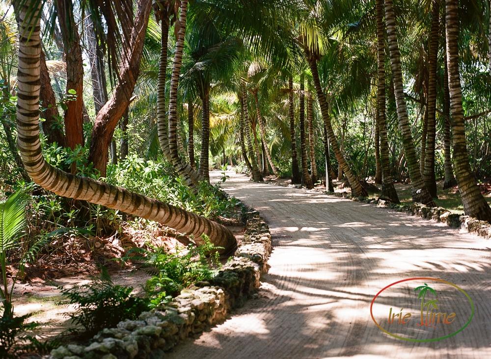 Kamalame Cay Bahamas-2-2