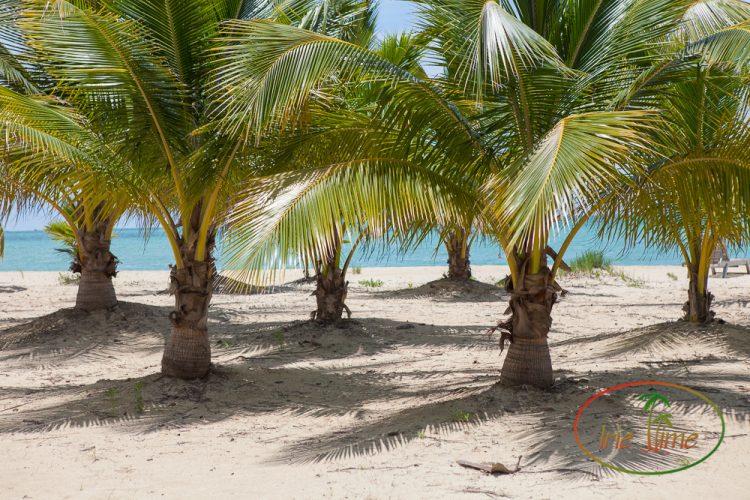 Kamalame Cay Tour