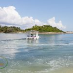 Walking Tour of Stanyard Creek, Andros, Bahamas