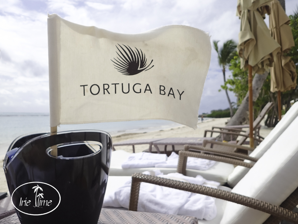 Beach Time at Tortuga Bay