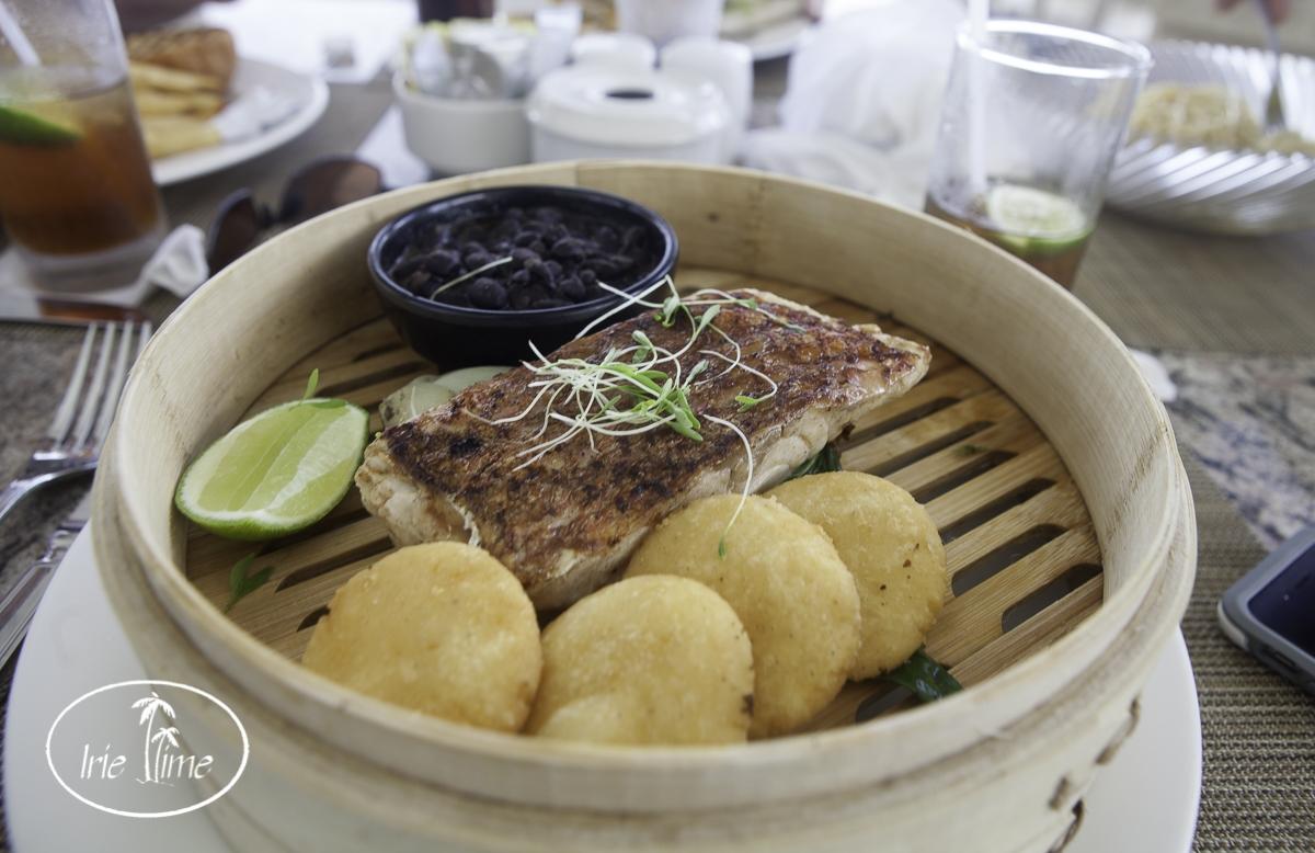 Taste Sip Tortuga Bay