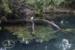 Ecological Park L-39