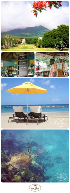 Nevis - Something for Everyone! The Best of Nevis 2017