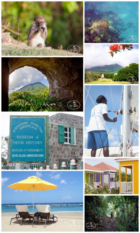 Top 10 Things to do in Nevis! #Nevis #Caribbean #travel