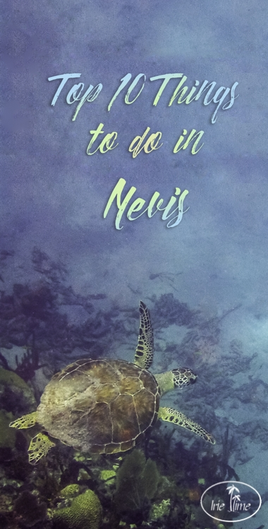Top 10 Things to Do in Nevis at My Irie Time!