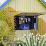 Cafe des Arts, Nevis